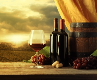 Know more about our Wine Collection